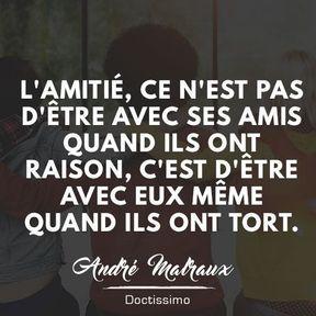 Citation amitié de André Malraux