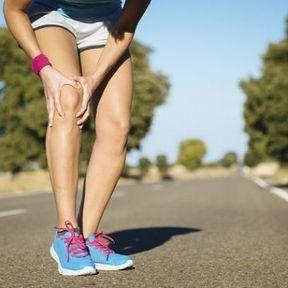 Le squelette de soutien : vertèbres, hanches, genoux et chevilles